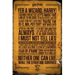 Poster Citation Harry Potter