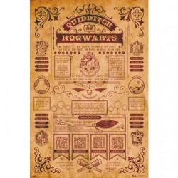 Poster Quidditch à Poudlard